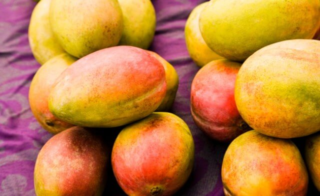 INDIA TO IMPORT MALAWIAN MANGO...