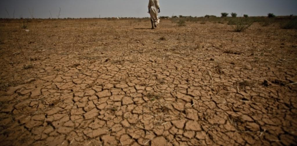 IMF SAYS CLIMATE CHANGE WILL A...