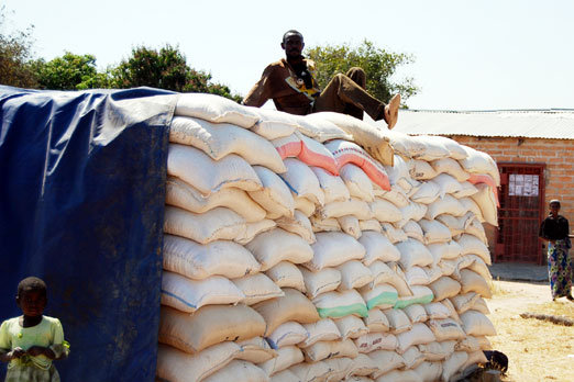 MW TO EXPORT 1m TONNES MAIZE...